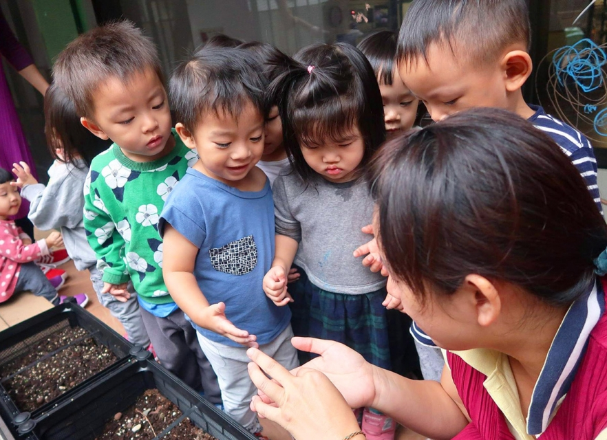 孩子們先來認識種子